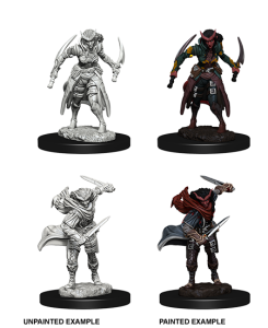 D&D RPG: Nolzur's Marvelous Miniatures Tiefling Female Rogue