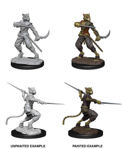 D&D RPG: Nolzur's Marvelous Miniatures Male Tabaxi Rogue