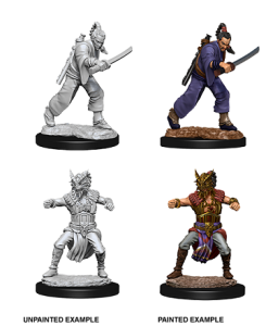 D&D RPG: Nolzur's Marvelous Miniatures - Male Human Monk (Dungeons and Dragons RPG)