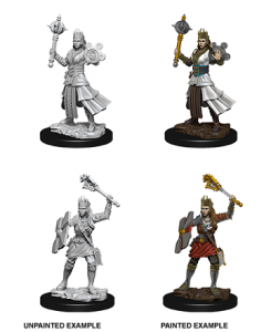 D&D RPG: Nolzur's Marvelous Miniatures - Female Human Cleric (Dungeons and Dragons RPG)