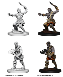 D&D RPG: Nolzur's Marvelous Miniatures - Nameless One (Dungeons and Dragons RPG)