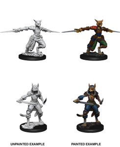 D&D RPG: Nolzur's Marvelous Miniatures - Female Tabaxi Rogue (Dungeons and Dragons RPG)