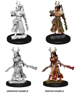 D&D RPG: Nolzur's Marvelous Miniatures - Female Human Druid (Dungeons and Dragons RPG)