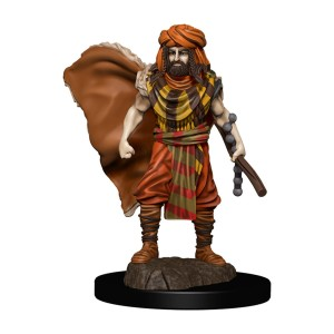 D&D RPG: Icons of the Realms - Premium Painted Miniatures - Human Druid Male (Dungeons and Dragons RPG)